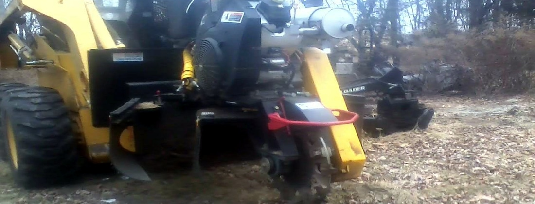 stump grinding in the Susex NJ area