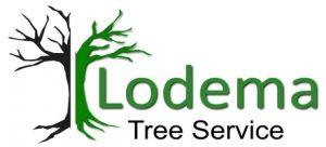 lodema tree service logo